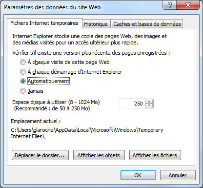 Paramètre des données du site Web d'IE11 sous Windows
