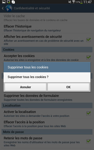Confirmation de la suppression des cookies de l'application (par défaut) navigateur sous Android